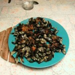 percebes ou bernache, fruits de mer typiques de Galice, en Espagne.