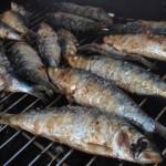 sardines grillées du port de Santurzi, dans le pays Basque espagnol